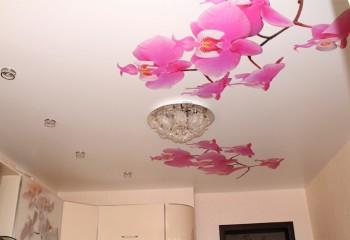 Неброский потолок с печатью
