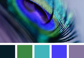 Синий, зеленый, фиолетовый