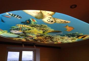 Изображение обитателей подводного мира