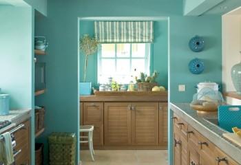 Колерованная краска в отделке кухни