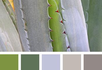 Коричневый, серебристый, зеленый