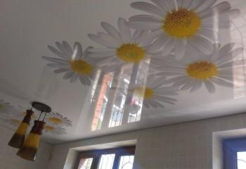 Фотопечать на натяжных потолках: цветы