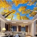 Потолки в разных комнатах