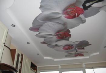 Матовое натяжное полотно с реалистичным изображением станет акцентом в интерьере кухни и придаст ей индивидуальности
