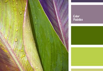 Сиреневый, фиолетовый, зеленый, салатовый