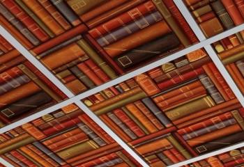 Пластиковые кассеты с фотопечатью в подшивном потолке