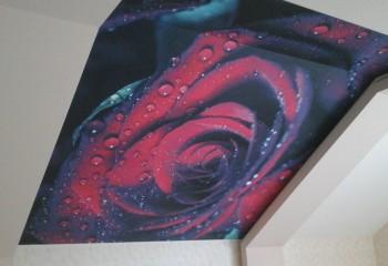 Изображение цветов на натяжных полотнах