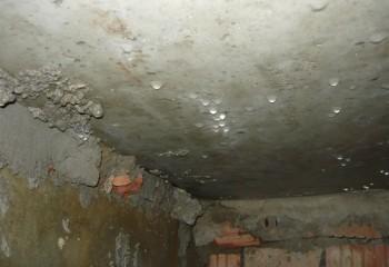 Конденсация в подвале