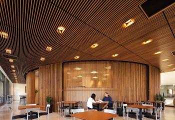 Рейки потолка – это доски небольшого сечения, установленные ребром вниз