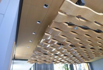 Подвесные потолки перфорированные из пластика