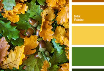 Желтый, зеленый, коричневый