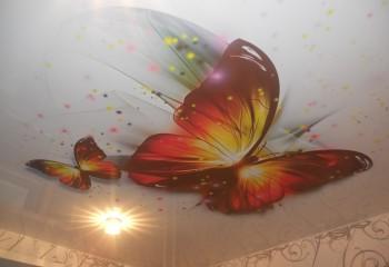 Бабочки на потолке