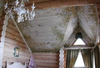 Великолепный дизайн потолка в деревянном доме