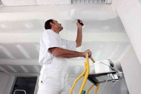 Чем лучше отделать потолок на кухне: один из вариантов – это краска