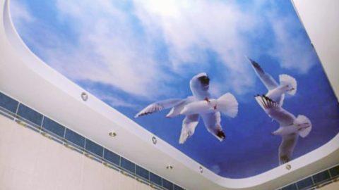 Объемное фотоизображение визуально стирает границы комнаты