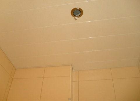 Окантовка потолка на фото выполнена стартовым L - профилем