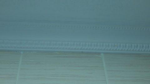 Пенопластовый багет скрывает примыкание потолка к стенам
