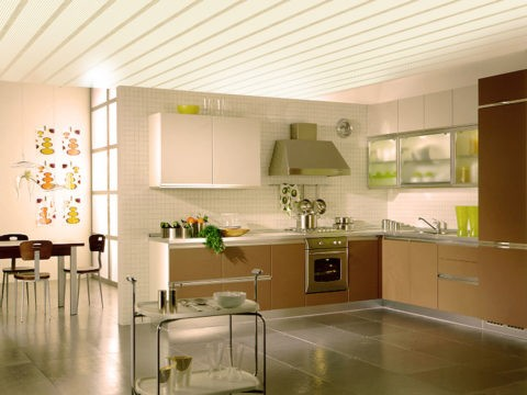 Пластиковый потолок – это не только плоские панели с просвечивающими ребрами жесткости