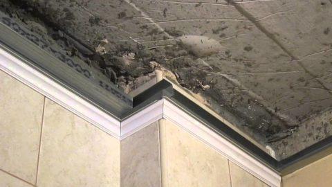 Пластиковый потолок разобран до дефектного участка