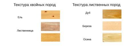 Популярные породы дерева