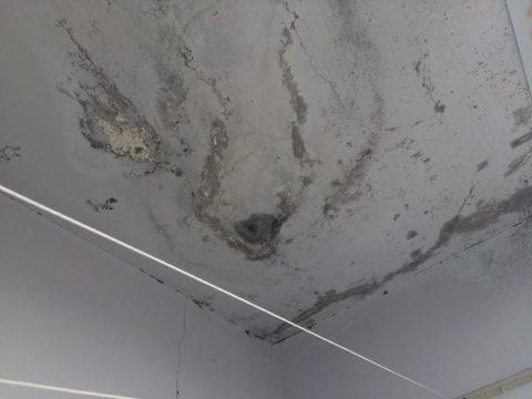 Пораженный грибком потолок