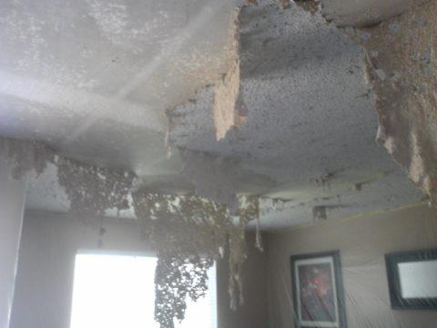 Потолок после воздействия смывки