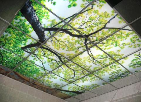 Стеклянные панели с внутренней подсветкой