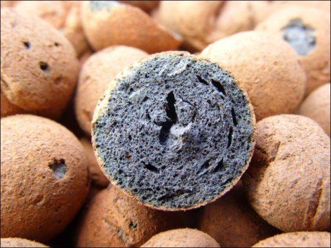 Так выглядят гранулы керамзита внутри