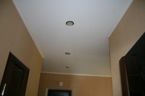 Тканевый потолок исключает появление грибка